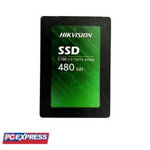 HIKVISION 480GB C100